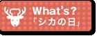 What's?「シカの日」